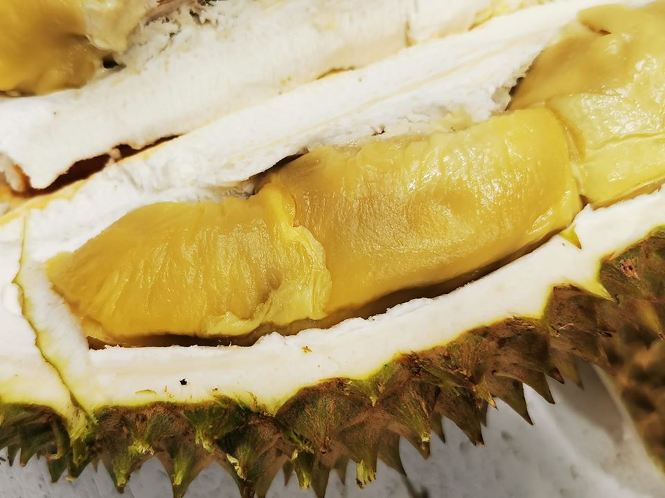Tekka Durian - Durian Delivery Singapore