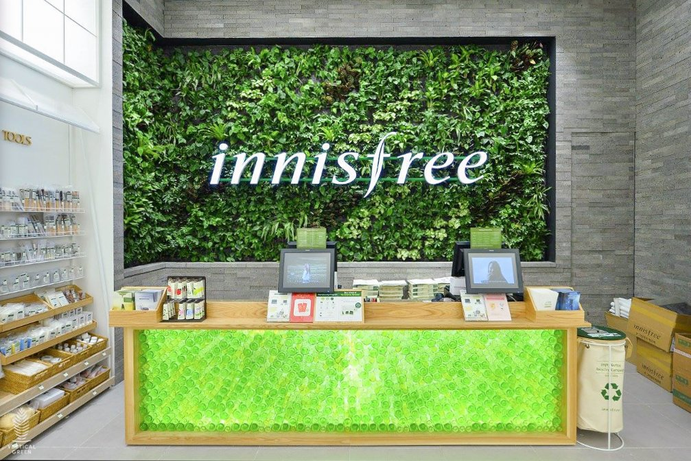 Best 18 Innisfree Products in Singapore
