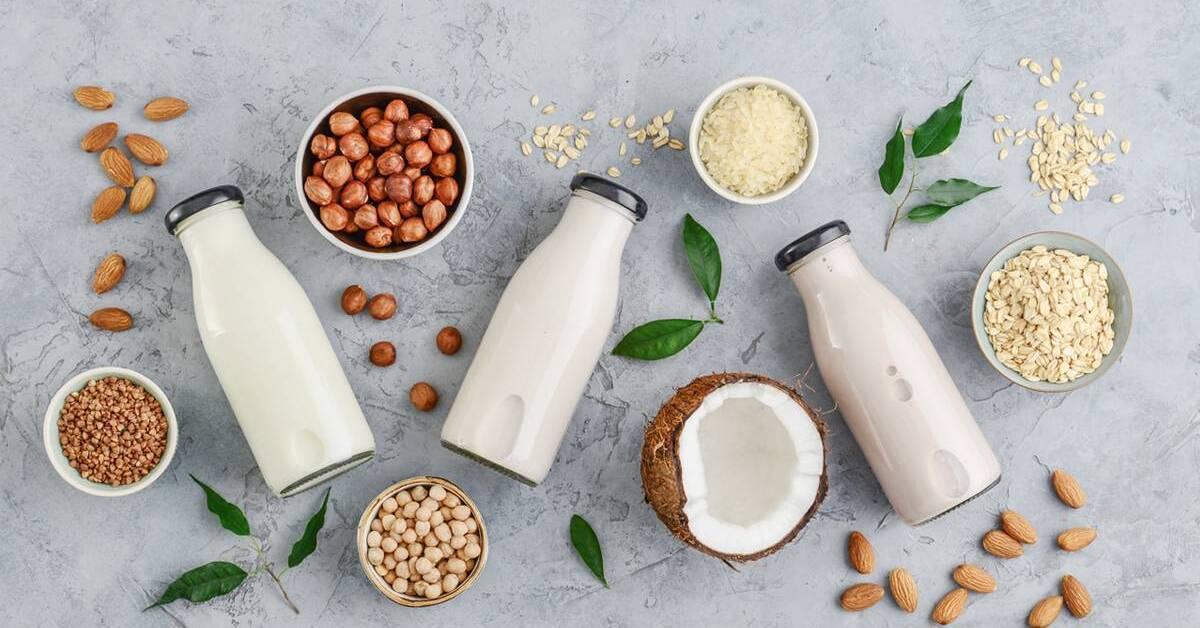 7 Best Non-Dairy Milk in Singapore [2021]