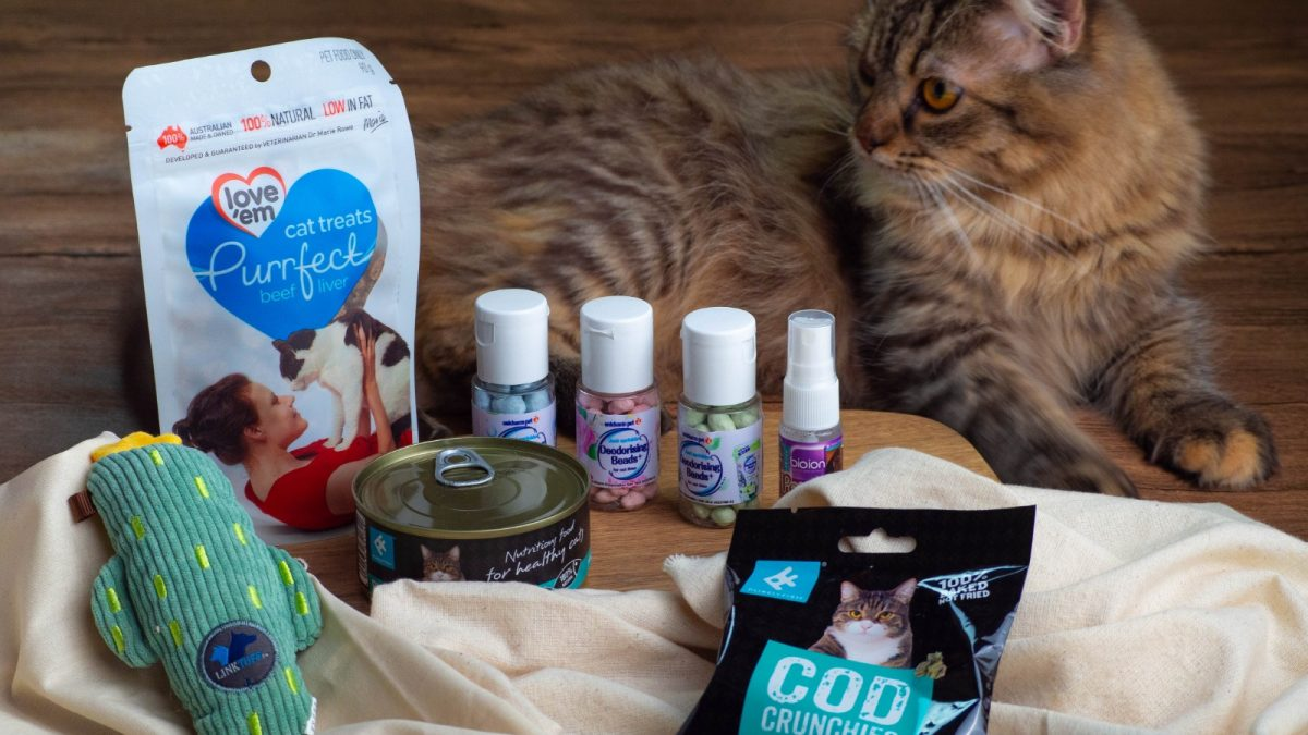 MāoBox Review: Best Cat Subscription Box in Singapore