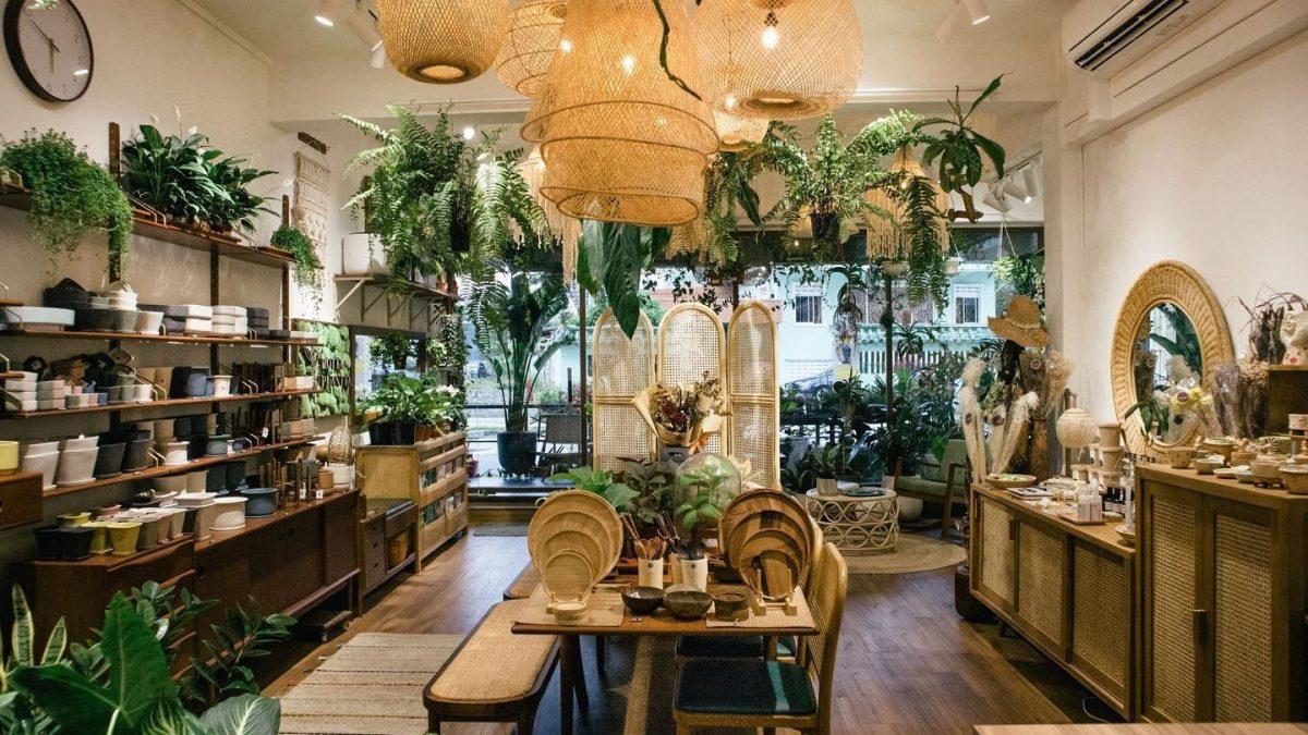15 Best Boutique Plant Shops in Singapore [2021]