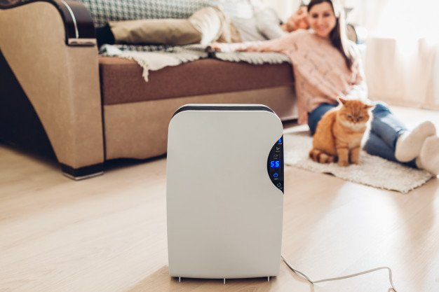 30 Best Air Purifiers in Singapore [2021]