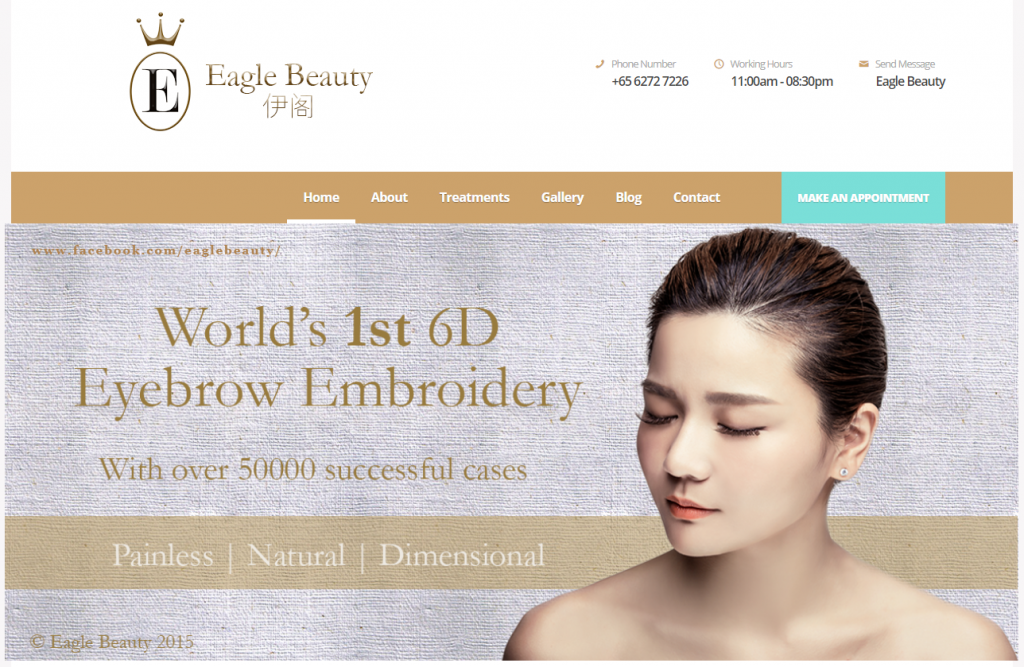 Eyebrow Embroidery Studios in Singapore