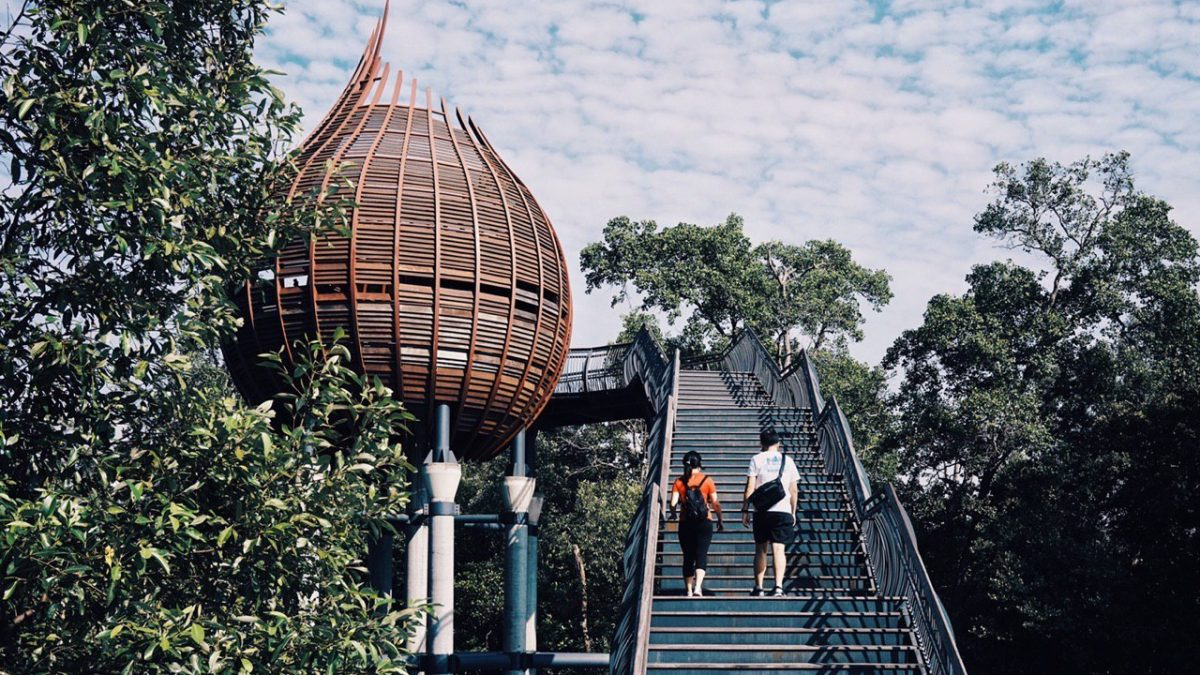 10 Best Hiking Trails in Singapore   Begin Your Adventure [2021]