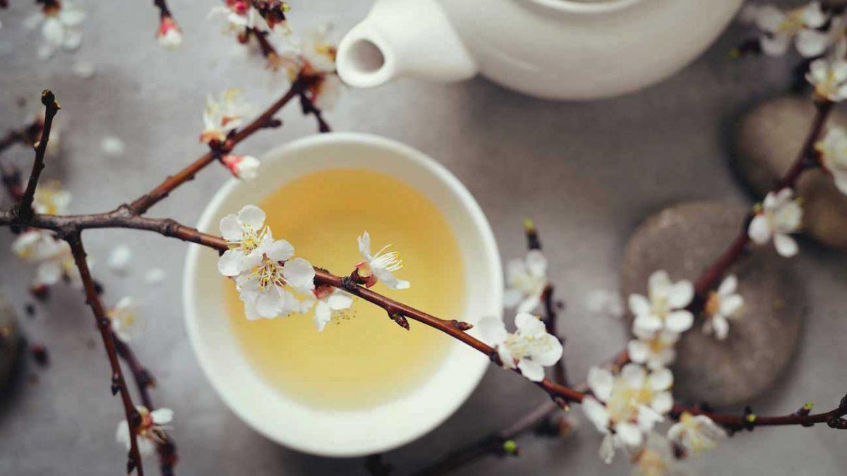 21 Best Tea-rrific Teas in Singapore [2021]