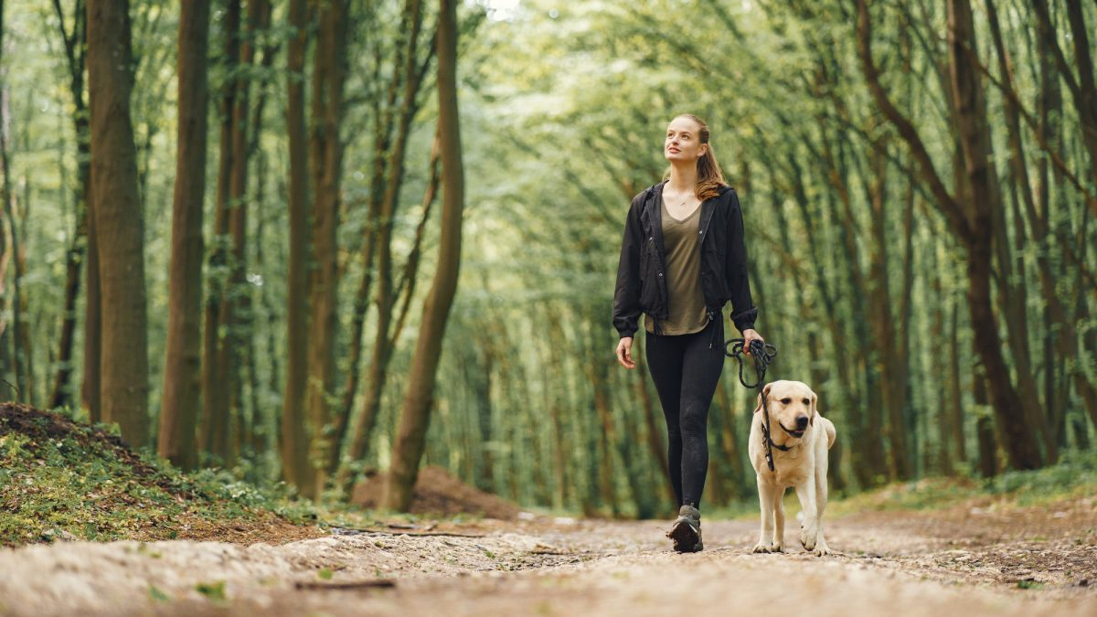 10 Best Pet Sitters For Your Furry Friends in Singapore 2021